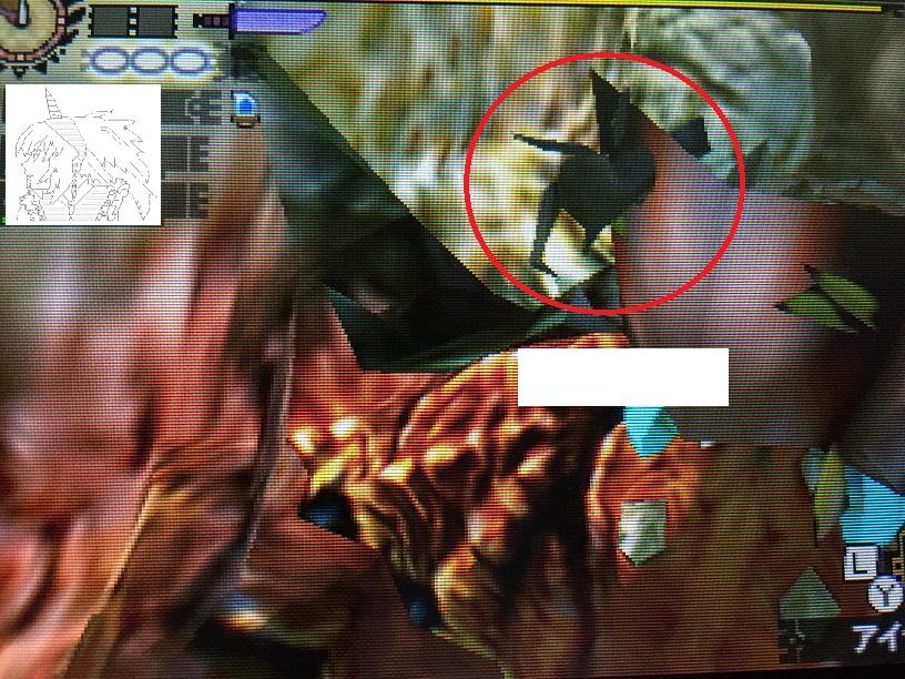 【豆知識シリーズ】テツカブラの口の奥にカブトムシがいるという噂を聞いたんだけど…。【モンハン写真】